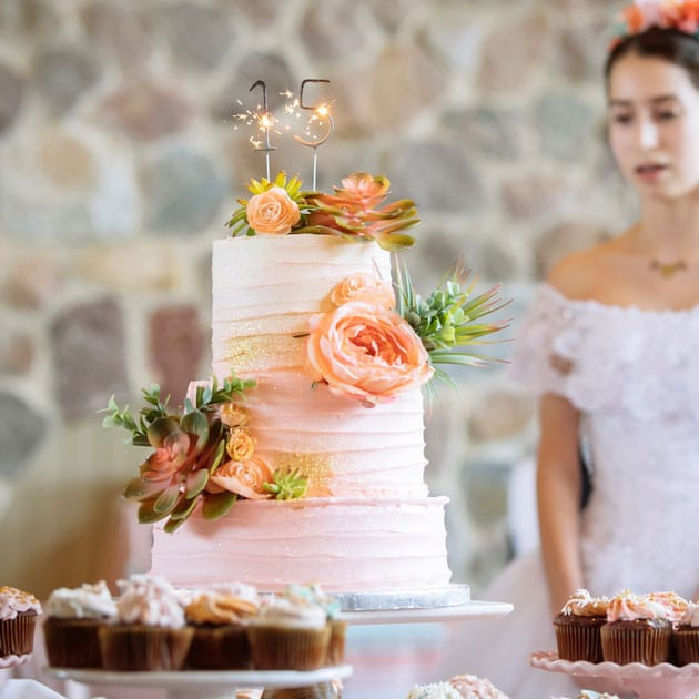 Beautiful Cake with Succulents at Quinceañera