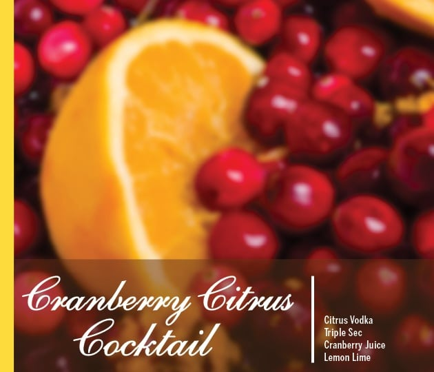 Cranberry Citrus Cocktail Holiday Drink Recipe