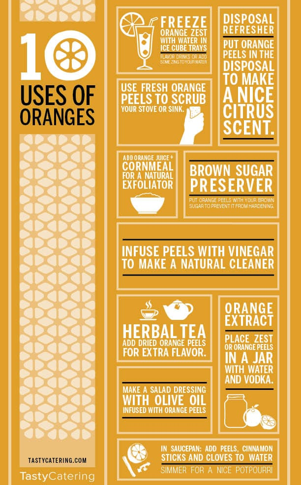 orange infographic